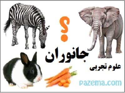 کاربرگ آموزش تفاوت های جانوران
