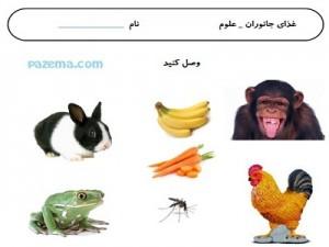 آموزش انواع جانوران به کودکان